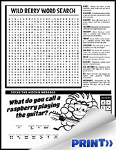 Kids Activity pages - berries