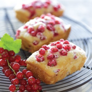 Red Currant Loaves