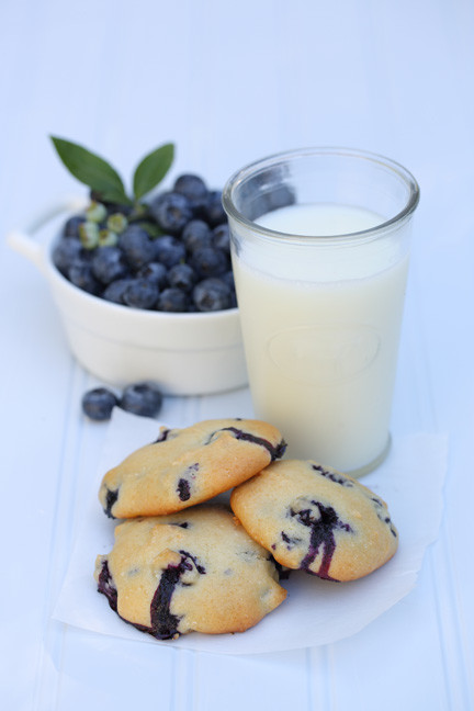 Blueberry Yogurt Cookies