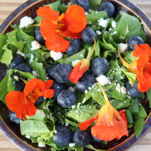 Fresh Salad with Blueberries