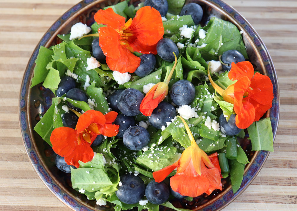 Salad with fresh blueberries