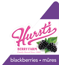 Hurst's Berry Farm