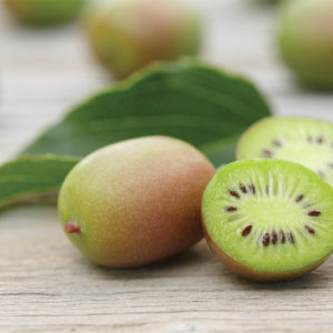 The Kiwi Berry: So Cute and Berry Packed With Flavor