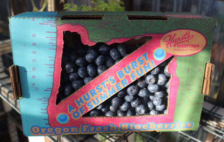 Oregon fresh blueberry box hurst berry HBF International